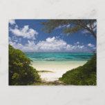Mauritius, Eastern Mauritius, Belle Mare, East Postcard