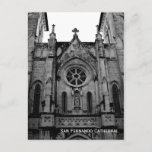 San Fernando Cathedral Postcard Photo