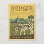 Kruger National Park, South Africa   Zebras & Gira Postcard