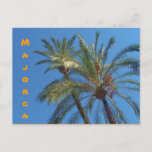 Majorca Palms - Postcard