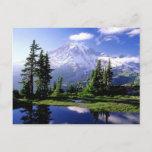 Mount Rainier Washington Postcard