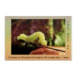 Words Of Wisdom Persistence Green Inchworm Modern Acrylic Print