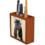 Studio portrait of French bulldog puppy standing Desk Organizer