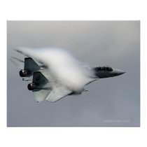 F14 in High Speed Pass Print