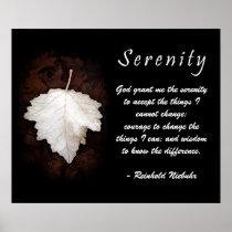 Serenity Inspirational Poster