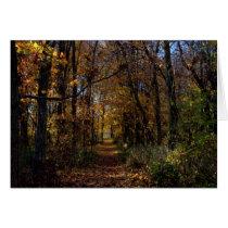 A Walk At Estel Wetlands #1 Greeting Card
