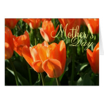 Sunny Orange Tulips Mother's Day Greeting Card
