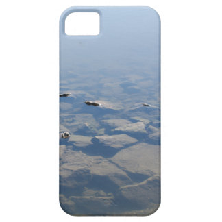 Ise Three iPhone 5 Cases