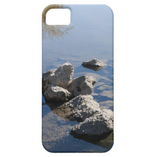 Ise Two iPhone 5 Cases