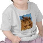 Ishak Pasha Palace PICTURE T-shirts