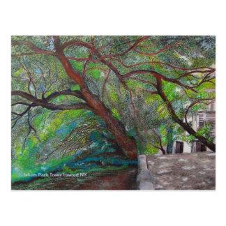 Isham Park Trees Postcards