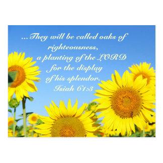 Isiah 61:3 Bible Verse Postcard