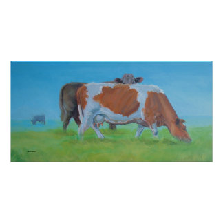 'Isiah' Cow painting Poster