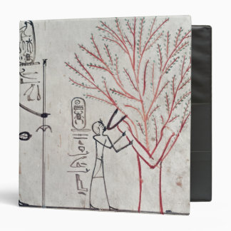 Isis metamorphosed into a sycamore tree 3 ring binder