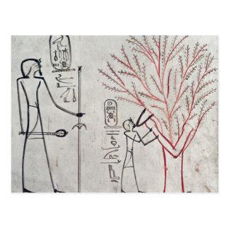ISIS transformado en un árbol del sicómoro Postal