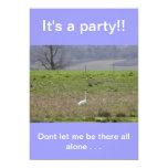 Isla Birthday|Sympathy de San Juan del cisne de Invitación 12,7 X 17,8 Cm