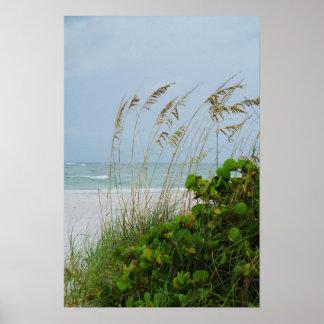 Isla de Ana Maria, la Florida, escena de la playa Póster