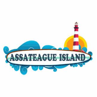 Isla de Assateague Escultura Fotografica