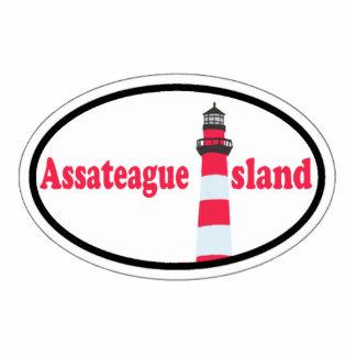 Isla de Assateague Escultura Fotográfica