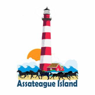 Isla de Assateague Fotoescultura Vertical
