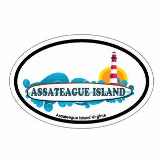 Isla de Assateague Imán Fotoescultura