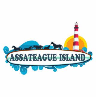 Isla de Assateague Pin Fotoescultura
