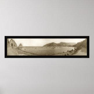 Isla de Catalina, foto 1911 de CA Póster