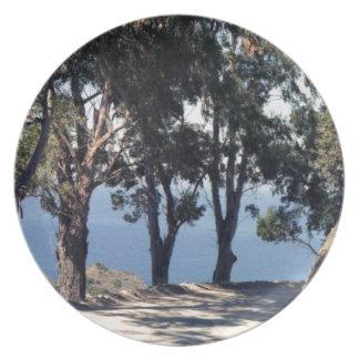 Isla de Catalina Plato Para Fiesta