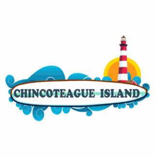 Isla de Chincoteague Pin Fotoescultura