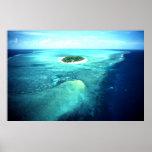 Isla de la garza, la gran barrera de coral, Austra Póster