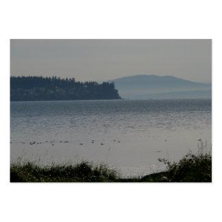 Isla de las orcas de la bahía del abedul tarjetas de visita grandes