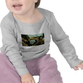 Isla de Mackinac de la roca del arco, Michigan 191 Camisetas