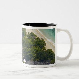 Isla de mar del sur, islas de Mamanuca, Fiji Taza