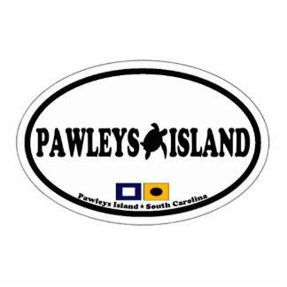 Isla de Pawleys Escultura Fotografica