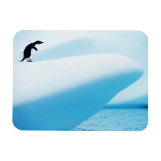 Isla de Petermann, la Antártida Imanes Rectangulares