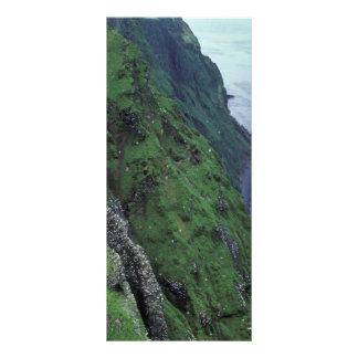 Isla de San Jorge, Pribilofs, altos pen¢ascos Lonas Publicitarias
