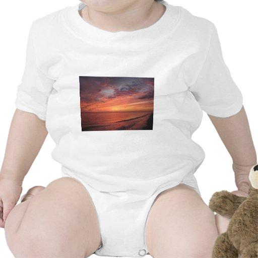 Isla de Sanibel, FL Camisetas