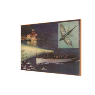 Isla de Santa Catalina, casino de CA, pez volador Lona Envuelta Para Galerias