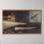 Isla de Santa Catalina, casino de CA, pez volador Poster