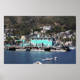 Isla de Santa Catalina Póster
