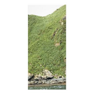 Isla de Ulak Lonas Personalizadas