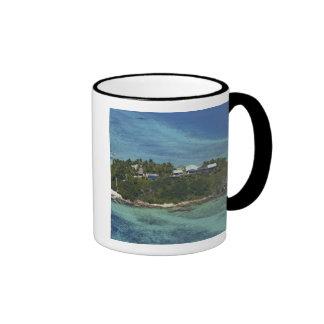 Isla de Wadigi, islas de Mamanuca, Fiji 2 Tazas
