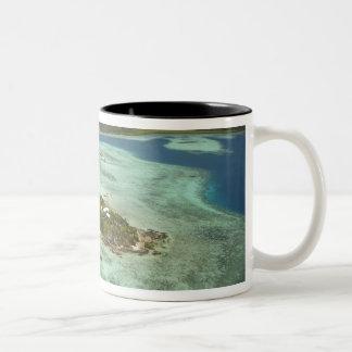 Isla de Wadigi, islas de Mamanuca, Fiji Tazas De Café