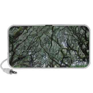 Isla del Cumberland iPod Altavoces