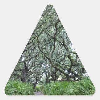 Isla del Cumberland Pegatinas Triangulo Personalizadas