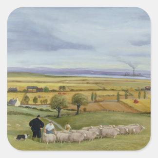 Isla del granjero de las ovejas de Sheppey Pegatina Cuadrada