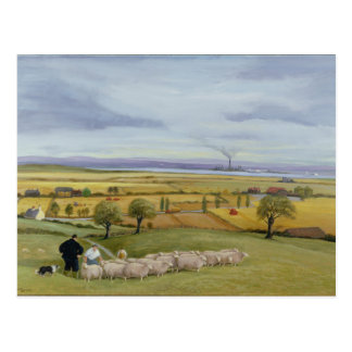 Isla del granjero de las ovejas de Sheppey Postal