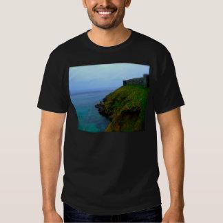 Isla del hombre playeras