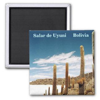 Isla del Pescado, Salar de Uyuni, Bolivia Fridge Magnet
