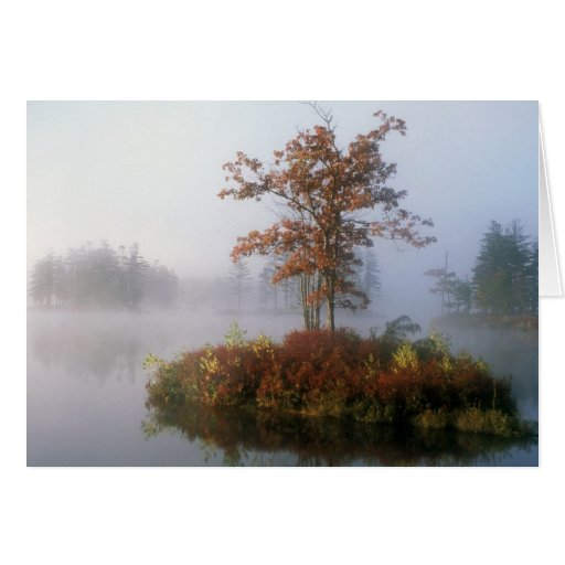 Isla en la niebla, lago Tully Tarjeta De Felicitación